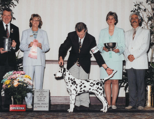 2004 Dalmatian Club of America National Specialty! She was 11 years ...
